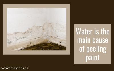 water-leakage-cause-of-peeling-paint